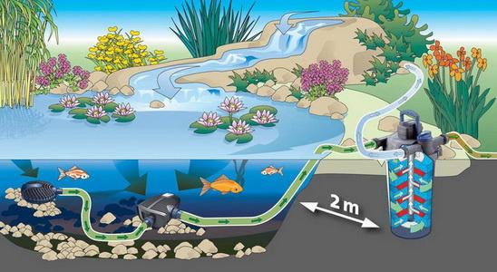 Наслаждаемся собственным водоемом или зачем нужны фильтры для прудов
