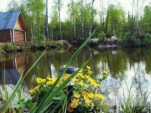 Главные преимущества дачи возле водоема
