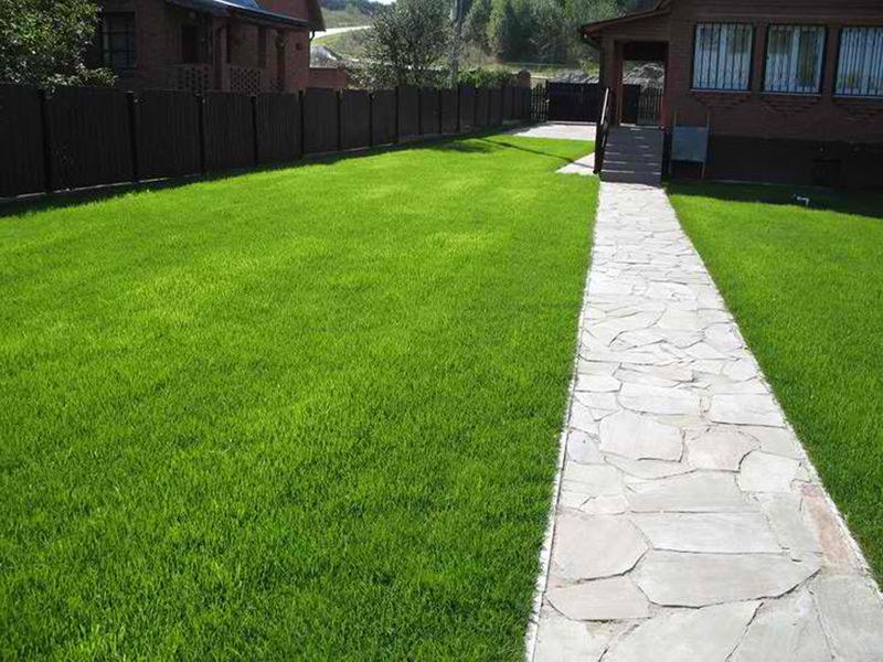 Почему на вашей лужайке должен быть искусственный газон?
