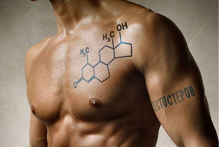 Тестостерон - природный гормон и база для стероидных препаратов