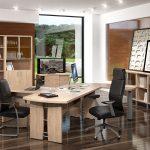Мебель в кабинет руководителя Born