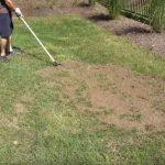 Пескование газона: зачем его проводить и как это правильно делать